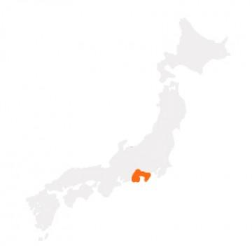Mt.Fuji-Shizuoka Area Tourist Pass Mini (3 Giorni)