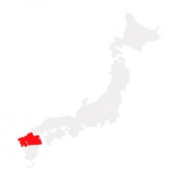 Northern Kyushu Area Pass